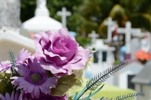Create a great funeral day  www.lorainenunley.com
