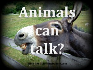 Animals can talk?  Bible Bits at lorainebehold.com