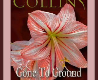 Gone to Ground by Brandilyn Collins   Book Review by Loraine Nunley