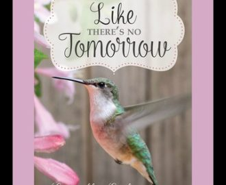 Like There's No Tomorrow by Camille Eide | Book Review by Loraine Nunley