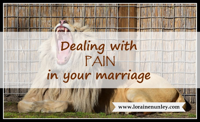 The thorn in the lion's paw - Dealing with pain in your marriage