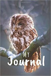 Book Cover: My Journal: Owl